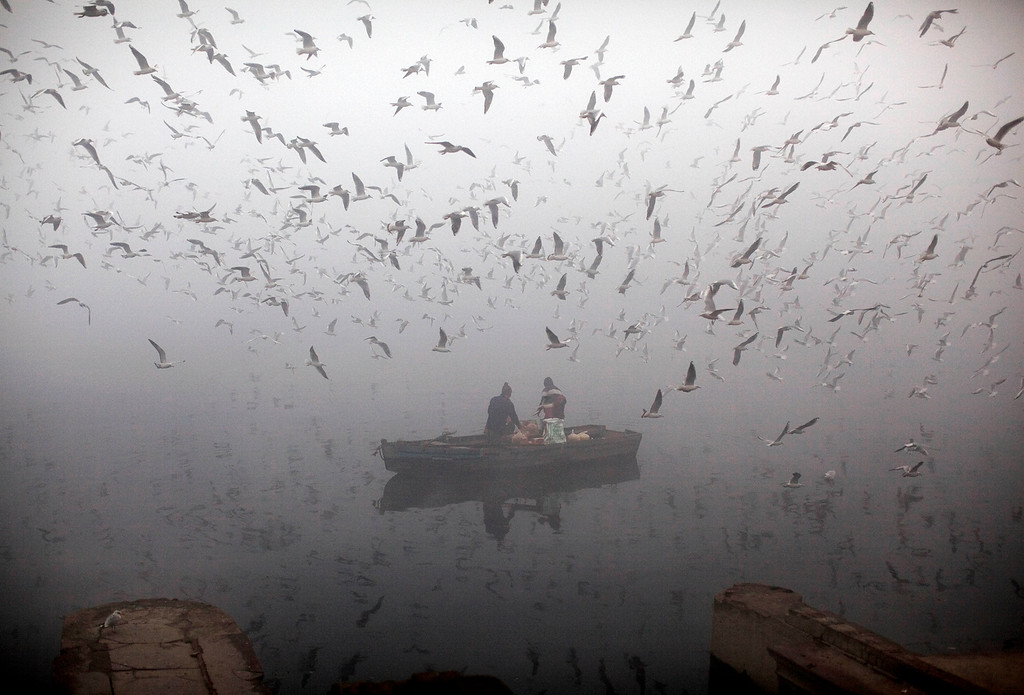 Description of . Indians feed birds from a boat on the River of Yamuna as it is enveloped by winter morning fog in New Delhi, India, Friday, Jan. 20, 2012. (AP Photo/Kevin Frayer)