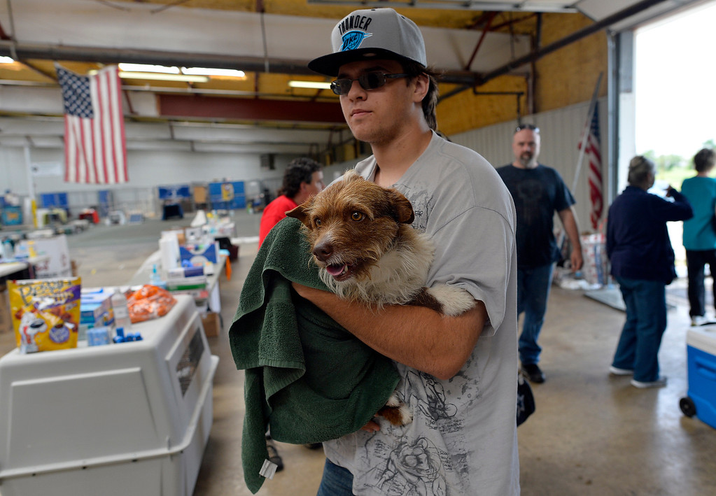 Description of . Brandon Sarrels brings a dog, that his mother found in the rubble of a tornado devastated house, to a pet shelter on May 23, 2013 in Moore, Oklahoma. Monday's tornado in this Oklahoma City suburb damaged or destroyed 1,200 homes and affected 33,000 people, officials said Thursday. Updating figures from one of the worst US tornados in recent years, they said the death toll from the powerful twister -- which struck with little notice in mid-afternoon -- remains at 24, with 377 injured. JEWEL SAMAD/AFP/Getty Images