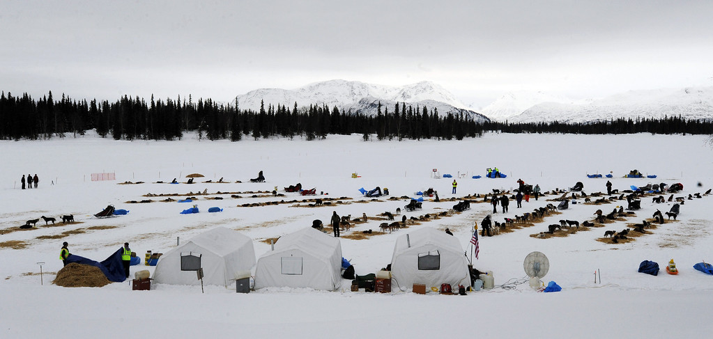 Description of . Competitors arrive at the Finger Lake checkpoint in Alaska during the Iditarod Trail Sled Dog Race on Monday, March 4, 2013. (AP Photo/The Anchorage Daily News, Bill Roth)