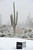 MARANA, AZ - FEBRUARY 20:  A detail of a tee box marker covered with snow as play was suspended during the first round of the World Golf Championships - Accenture Match Play at the Golf Club at Dove Mountain on February 20, 2013 in Marana, Arizona.  (Photo by Stuart Franklin/Getty Images)