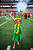 A hula dancer performs before the NFL Pro Bowl football game in Honolulu, Sunday, Jan. 27, 2013. (AP Photo/Marco Garcia)