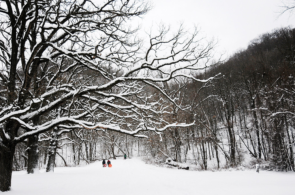 Description of . Children make their way up the hill at Bluffside Park while sledding Thursday, Dec. 20, 2012, in Winona, Minn. (AP Photo/Winona Daily News, Joe Ahlquist)