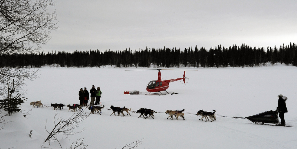 Description of . Jessie Royer leaves the Finger Lake checkpoint in Alaska during the Iditarod Trail Sled Dog Race on Monday, March 4, 2013. (AP Photo/The Anchorage Daily News, Bill Roth)