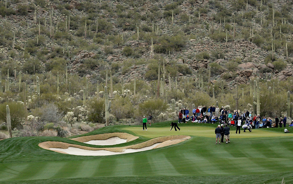 Description of . Charles Howell III, left, and Tiger Woods line up their putts on the 14th green during the Match Play Championship golf tournament, Thursday, Feb. 21, 2013, in Marana, Ariz. Howell III won 2 and 1. (AP Photo/Ted S. Warren)