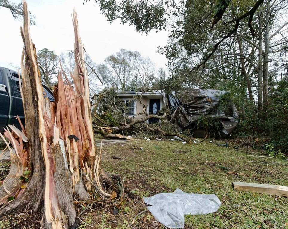Description of . A snapped tree is seen in a residential area following a winter storm in Mobile, Alabama, December 20, 2012. The first major winter storm of the year took aim at the U.S. Midwest on Thursday, triggering high wind and blizzard warnings across a widespread area, and a threat of tornadoes in Gulf Coast states to the south. REUTERS/Jon Hauge