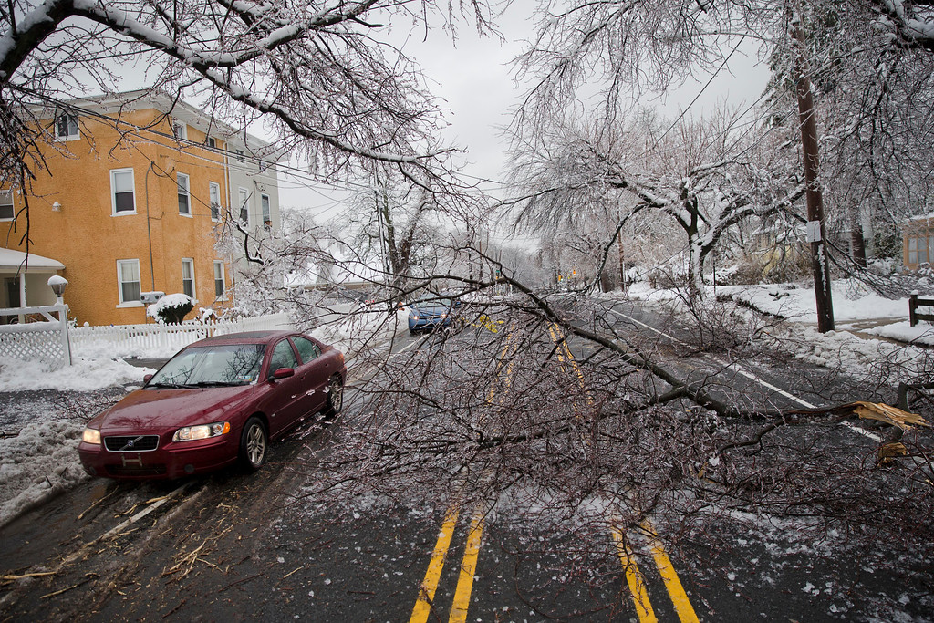 Description of . Cars drive around a downed limb after a winter storm Wednesday, Feb. 5, 2014, in Philadelphia. Icy conditions have knocked out power to more than 200,000 electric customers in southeastern Pennsylvania and prompted school and legislative delays as well as speed reductions on major roadways.  (AP Photo/Matt Rourke)