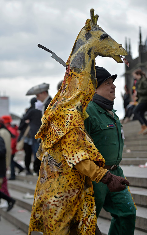 "Description of . A man dressed up as the killed giraffe from the Copenhagen zoo walks in the street when tens of thousands of revelers dressed in carnival costumes celebrate the start of the street-carnival on the so called ""Old Women\'s Day\"" in the party capital Cologne, Germany, Thursday, Feb. 27, 2014. (AP Photo/Martin Meissner)"