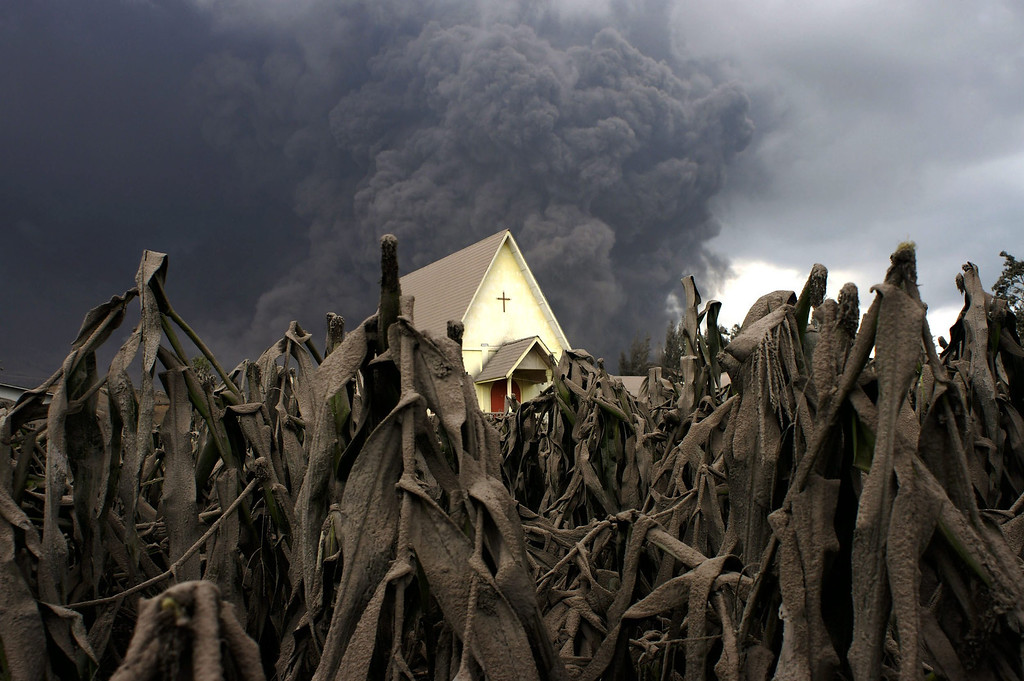Description of . A church is seen in the middle of a corn field covered with volcanic ash as Mount Sinabung spews volcanic materials as seen from Sibintun village in Karo, North Sumatra, Indonesia, on Jan. 6, 2014. More then 20,000 people have been displaced since the volcano began its most recent activity in September, officials said.  EPA/MAFA YULI RAMADHANI
