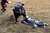 DENVER, CO. - JANUARY 21:  Jimmy Patterson is knocked out by his bull at the National Western Stock Show Martin Luther King Heritage Rodeo January 21, 2013