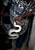 In this Jan. 27, 2013 photo, snake handler Saintilus Resilus holds a snake at his home where he prepares for his performances during the pre-Lenten Carnival season in Petionville, Haiti.  Resilus has used snakes and other animals to earn a little money since at least 1974. Restilus welcomes the meager income and his fleeting fame. But his children, at least, think he hasn't gotten the recognition he deserves. (AP Photo/Dieu Nalio Chery)