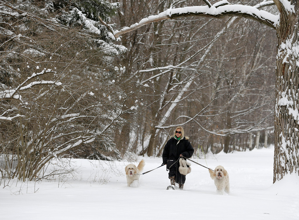 Description of . Julia Pollock wears snow shoes to take her goldendoodles, Cody, left, and Bond, right, for a walk in the fresh snow Wednesday, Feb. 5, 2014, in Shaker Heights, Ohio.  Most of Ohio was hit with another bout or heavy snow and freezing rain, closing hundreds schools and creating extremely hazardous driving conditions. Much of the state was slammed with 4 to 8 inches of snow overnight. (AP Photo/Tony Dejak)