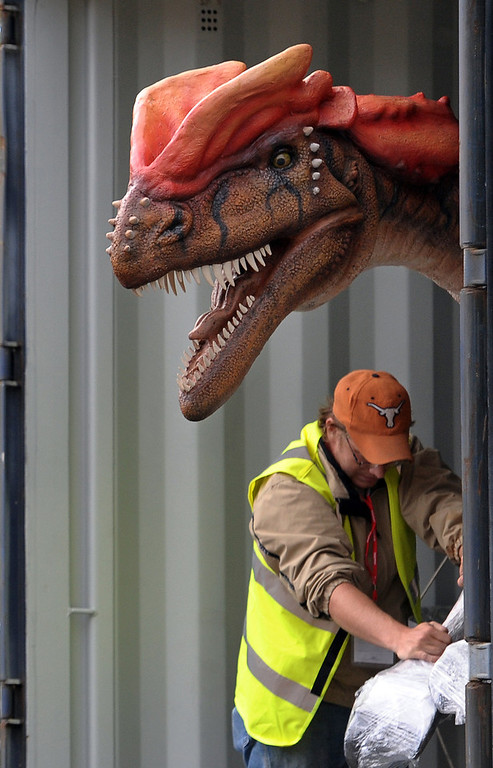Description of . An animatronic Rugops is removed from a shipping container after being shipped from the US to Chester Zoo in north-west England, on June 15, 2011. The dinosaur is one of 13 that will be on display at the 'Dinosaurs at Large' exhibition at the zoo from July 1 to October 8, 2011. AFP PHOTO/PAUL ELLIS