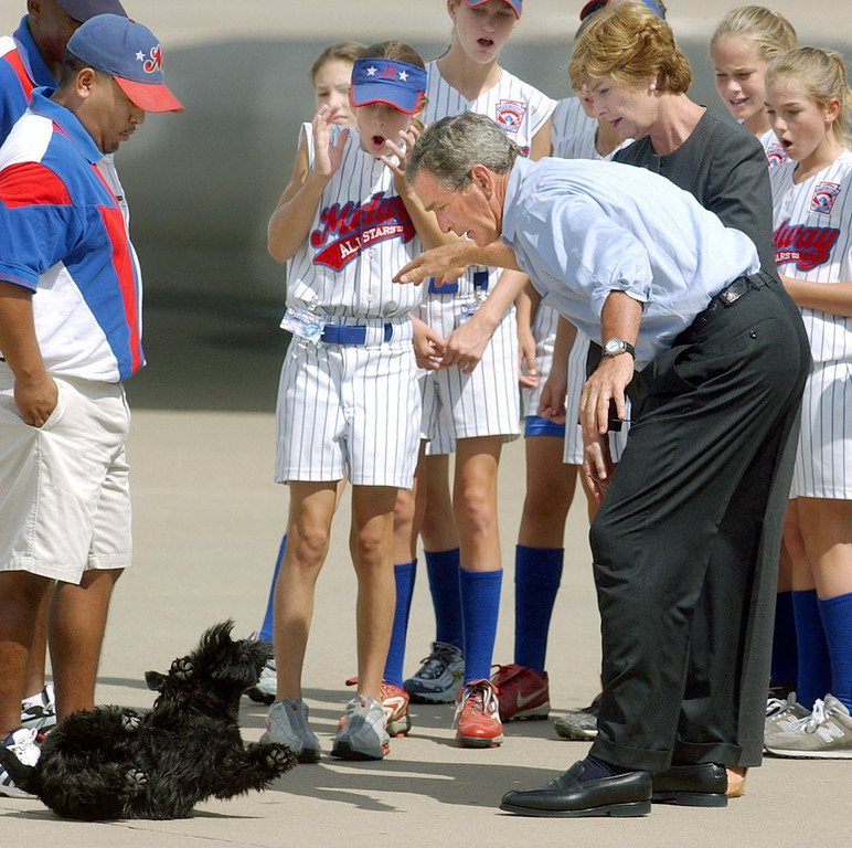 Description of . President Bush, along with first lady, Laura Bush, and members of the Waco Midway Little League Softball World Series championship team, react as Bush accidentally drops his dog, Barney, Saturday, Aug. 30, 2003, at TSTC Airfield in Waco, Texas. Bush quickly scooped up the dog who was not injured. (AP Photo/Duane A. Laverty)