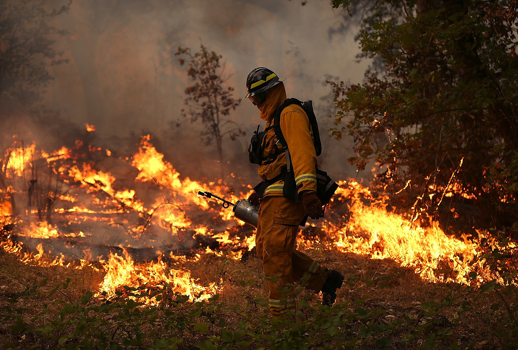 Description of . GROVELAND, CA - AUGUST 21:  A firefighter from Ebbetts Pass Fire District uses a drip torch to light a back fire while battling the Rim Fire on August 21, 2013 in Groveland, California. The Rim Fire continues to burn out of control and threatens 2,500 homes outside of Yosemite National Park. Over 400 firefighters are battling the blaze that is only 5 percent contained.  (Photo by Justin Sullivan/Getty Images)