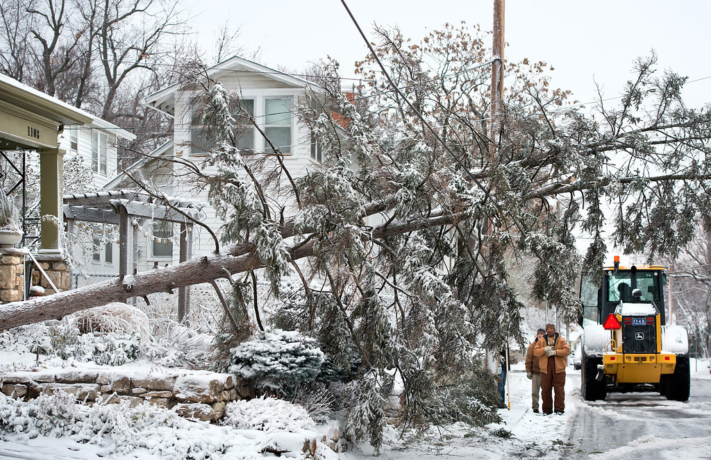 Description of . Kansas City, Missouri city workers examine a fallen tree that landed on a telephone wire during snow and windstorm, Thursday, December 20, 2012, in Kansas City. (David Eulitt/Kansas City Star/MCT)