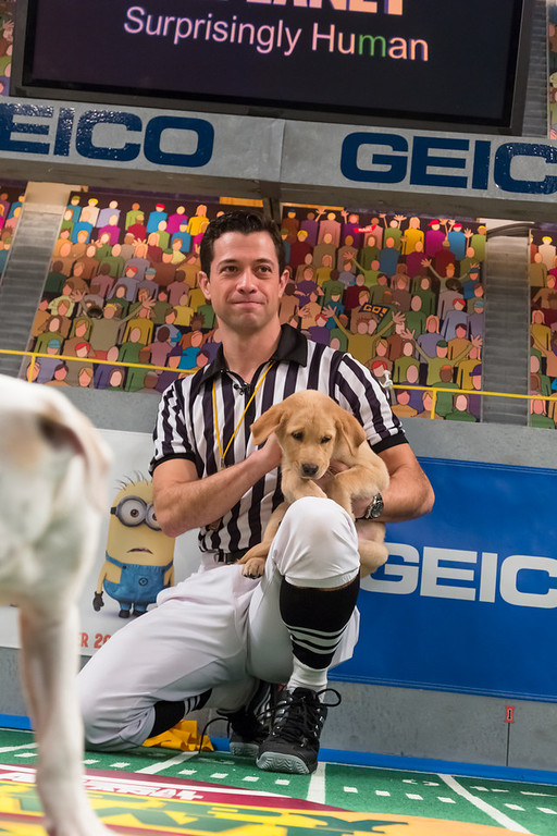 Description of . Referee talks to a dog during Puppy Bowl IX(Photo credit: Animal Planet)