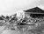 In this photo provided by the Department of Defense, U.S. aircraft destroyed as a result of the Japanese bombing on Pearl Harbor is shown, Dec. 7, 1941. Heap of demolished hanger in background Army amphibian in foreground. (AP Photo/DOD)