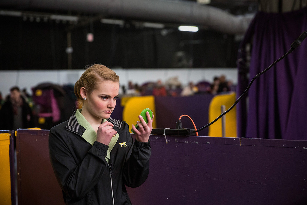 Description of . A woman checks her make-up during the 138th annual Westminster Dog Show at the Piers 92/94 on February 10, 2014 in New York City. The annual dog show showcases the best dogs from around world for the next two days in New York.  (Photo by Andrew Burton/Getty Images)