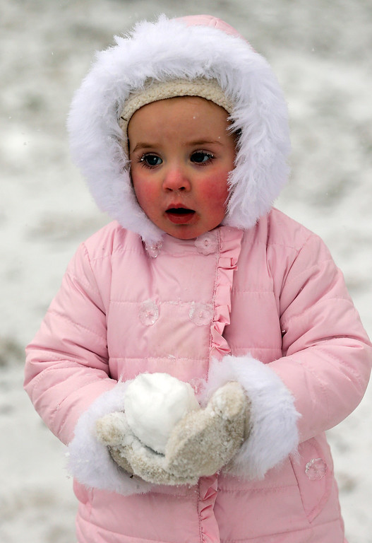 Description of . Bella Mapes, 2, of Charlotte, N.C., carries a snowball as she walks with her family in a park in Charlotte, N.C., Wednesday, Feb. 12, 2014. The National Weather Service has issued a winter storm warning for Wednesday and into Thursday covering 95 of the state\'s 100 counties in North Carolina. (AP Photo/Chuck Burton)