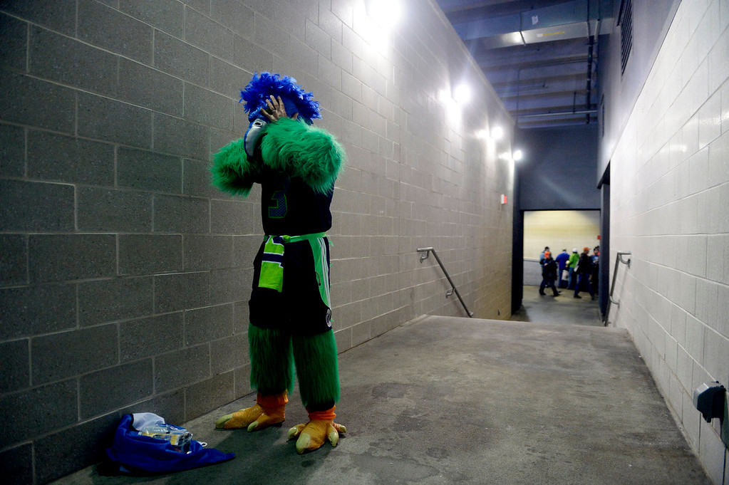Description of . A version of the Sehawks mascot Blitz gets ready prior to the start of the game.  The Denver Broncos vs the Seattle Seahawks in Super Bowl XLVIII at MetLife Stadium in East Rutherford, New Jersey Sunday, February 2, 2014. (Photo by AAron Ontiveroz/The Denver Post)