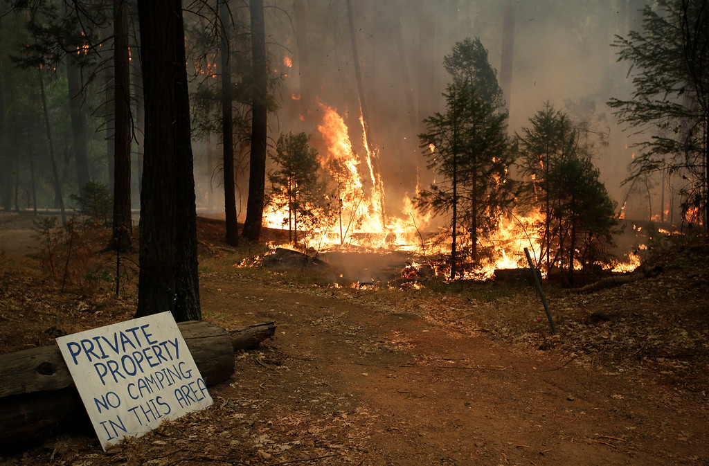 Description of . Trees burn as firefighters continue to battle the Rim Fire near Yosemite National Park, Calif., on Sunday, Aug. 25, 2013.AP Photo/Jae C. Hong)