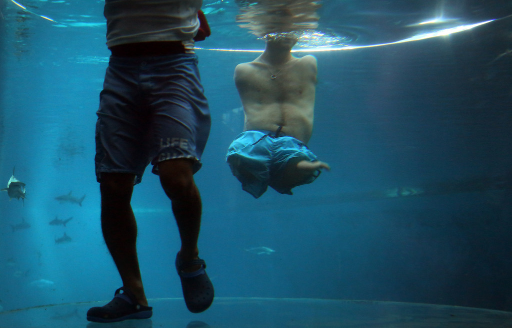 "Description of . Nick Vujicic, right, is accompanied by a life guard as he threads water in an acrylic enclosure keeping safe while diving among sharks, Thursday, Sept. 5, 2013 in Singapore. Vujicic, a Serbian Australian evangelist and motivational speaker born with tetra-amelia syndrome, a rare disorder characterized by the absence of all four limbs, is in the city-state to give a motivational talk and was visiting ""The Shark Encounter at Marine Life Park\"" at one of Singapore\'s main tourist attractions in Resorts World Sentosa. (AP Photo/Wong Maye-E)"