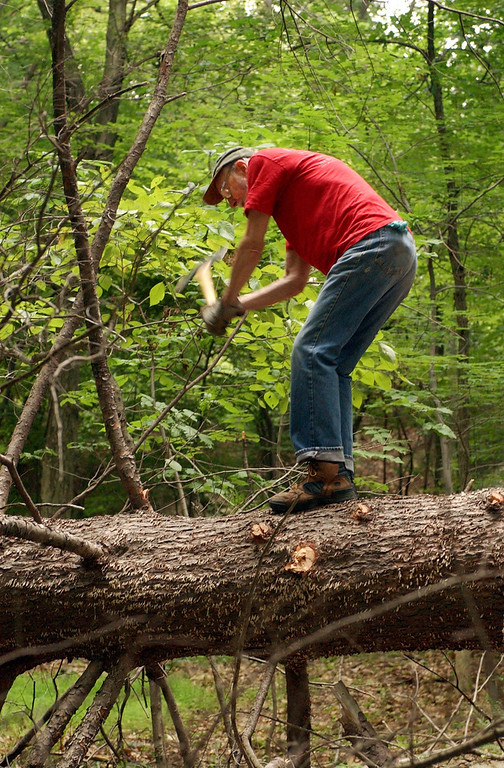 Description of . Pete Seeger, who turned 85 in May 2004, removes a limb from a dead hemlock with a double bladed axe on  Tuesday, July 27, 2004, that he and his neighbor took down on his property at Beacon, N.Y. (AP Photo/Jim McKnight)