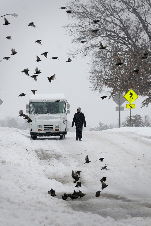 Description of . A pedestrian walks down a street as a flock of birds fly by after heavy snowfall moved through the region on Dec. 6, 2013, in Carbondale, Ill. (AP Photo/The Southern, Steve Matzker)