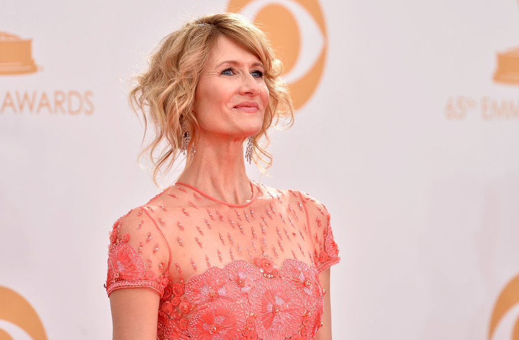 Description of . Actress Laura Dern arrives at the 65th Annual Primetime Emmy Awards held at Nokia Theatre L.A. Live on September 22, 2013 in Los Angeles, California.  (Photo by Frazer Harrison/Getty Images)