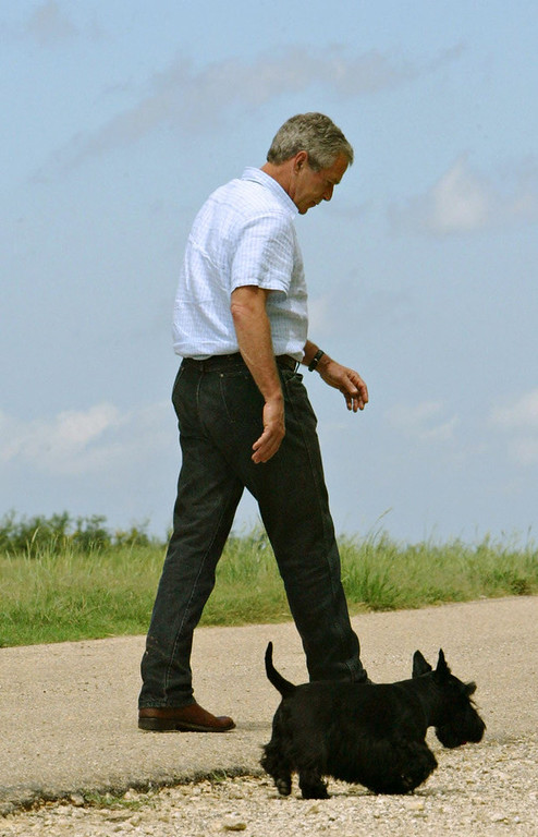Description of . President Bush walks away with his dog Barney after answering questions following his defense meeting on his ranch Monday, Aug. 23, 2004, in Crawford, Texas. Bush denounced TV ads by outside groups attacking both John Kerry and himself on Monday and called for a halt to all such political efforts.