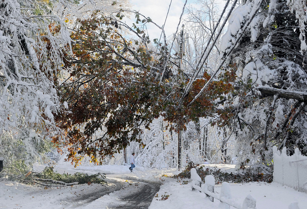 Description of . In this Oct. 30, 2011 file photo, a man walks near a tree down on a power line a day after a snow storm in Glastonbury, Conn.  (AP Photo/Jessica Hill, File)