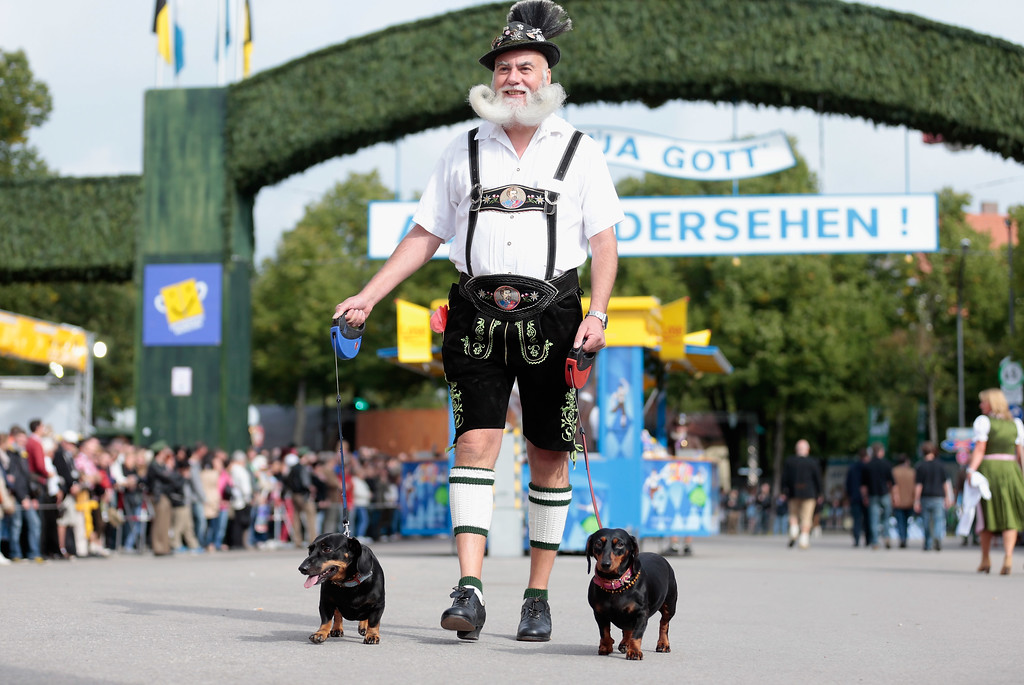 Description of . A Bavarian dressed man arrives with his sausage dogs during the opening parade of the Oktoberfest 2013 beer festival at Theresienwiese on September 21, 2013 in Munich, Germany. The Munich Oktoberfest, which this year will run from September 21 through October 6, is the world's largest beer fest and draws millions of visitors.  (Photo by Johannes Simon/Getty Images)