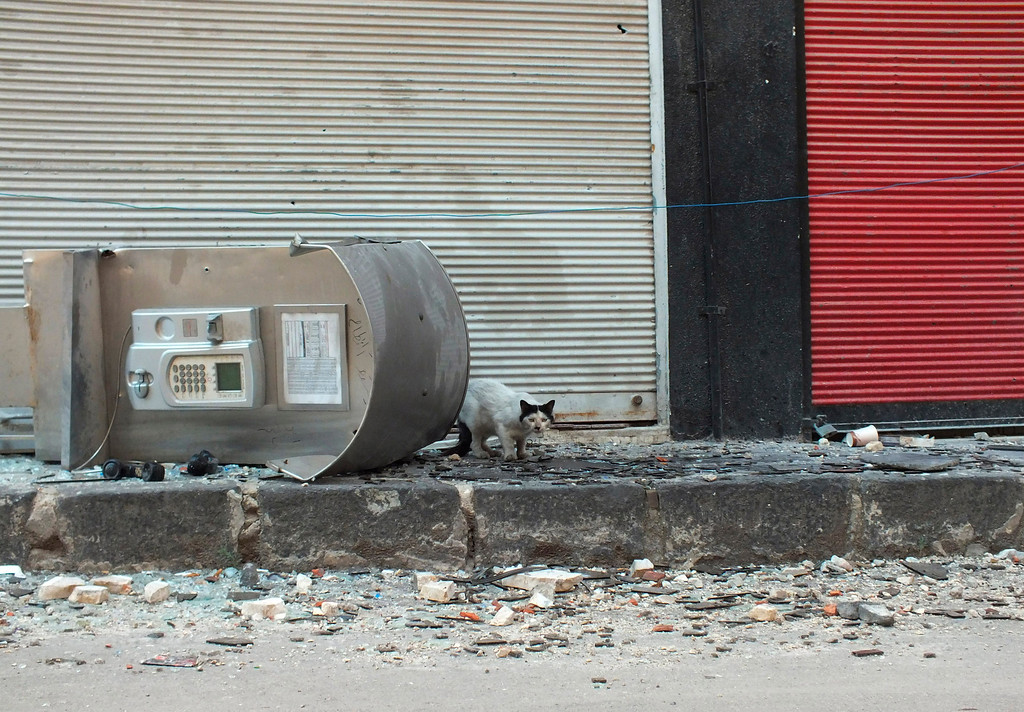 Description of . A cat stands next to a damaged telephone booth in Hamidiyeh district in the central city of Homs July 1, 2012.  REUTERS/Yazen Homsy