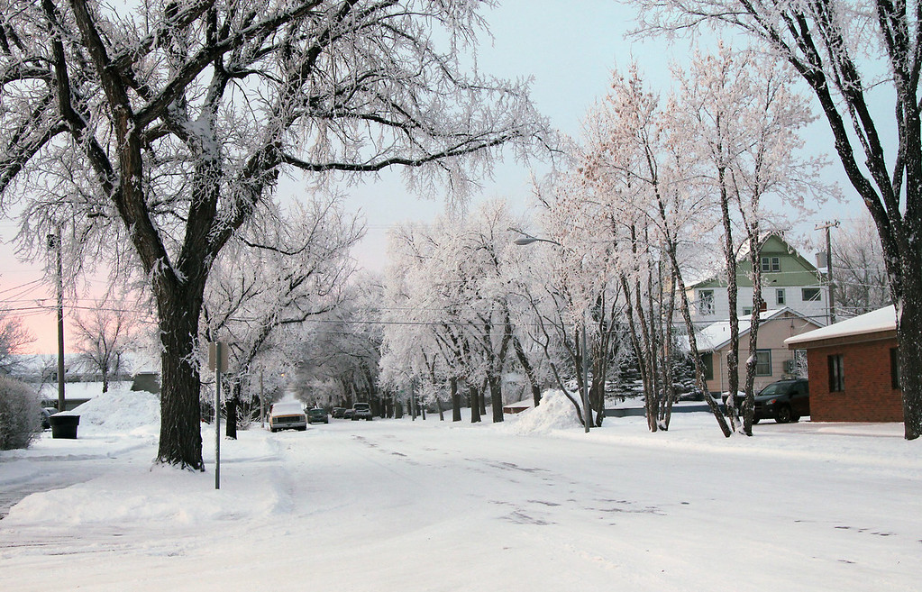 Description of . The pink light of sunrise highlights frost-covered trees along in Havre, Mont., on Thursday, Jan. 2, 2014. (AP Photo/Havre Daily News, Lindsay Brown)