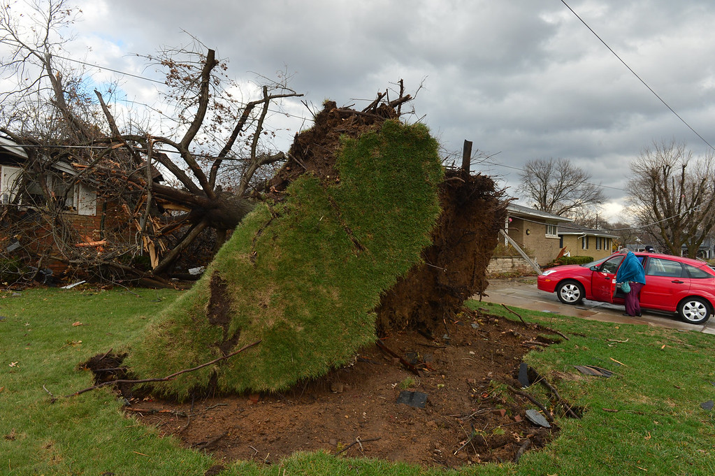 Description of . A tree was pulled out of the ground by the roots, collapsing onto a house after a tornado left a path of devastation through the north end of Pekin, Il.,Sunday, Nov. 17, 2013. Intense thunderstorms and tornadoes swept across the Midwest on Sunday, causing extensive damage in several central Illinois communities while sending people to their basements for shelter. (AP Photo/Journal Star, Fred Zwicky)