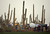 MARANA, AZ - FEBRUARY 20:  Fans walk off the course under umbrellas as play was suspended due to snow and rain during the first round of the World Golf Championships - Accenture Match Play at the Golf Club at Dove Mountain on February 20, 2013 in Marana, Arizona.  (Photo by Darren Carroll/Getty Images)