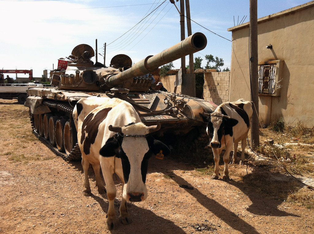 Description of . A picture taken on June 7, 2013, shows cows standing next to a Syrian army tank in Dabaa, north of Qusayr, in Syria's central Homs province. Forces loyal to President Bashar al-Assad reclaimed control of the central village of Dabaa on June 6, Syrian state television said, a day after the army and Lebanon's Hezbollah captured a rebel bastion. -/AFP/Getty Images