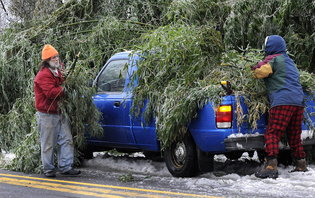 Description of . A couple stop on Route 152 in Perkasie, Pa. to clear the road of a giant bamboo plant that had fallen from the weight of the ice onto the road on Wednesday morning, Feb. 5, 2014.   The winter storm brought snow and ice to the area snarling traffic and causing power outages.  (AP Photo/The Intelligencer, Art Gentile)