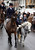 A young rider with the Avon Vale Hunt, follows the hounds as they ride out for their traditional Boxing Day hunt, on December 26, 2012 in Lacock, England. As hundreds of hunts met today, Environment Secretary Owen Paterson claimed that moves to repeal the ban on hunting with dogs in England and Wales may not happen in 2013, although he insisted it was still the government's intention to give MPs a free vote on lifting the ban.  (Photo by Matt Cardy/Getty Images)