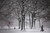 A person walks through a snow-shrouded park on March 8, 2013 in the Brooklyn borough of New York City. (Photo by Spencer Platt/Getty Images)