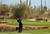 MARANA, AZ - FEBRUARY 21:  Tiger Woods hits a shot from the fairway on the fourth hole during the first round of the World Golf Championships - Accenture Match Play at the Golf Club at Dove Mountain on February 21, 2013 in Marana, Arizona. Round one play was suspended on February 20 due to inclimate weather and is scheduled to be continued today.  (Photo by Darren Carroll/Getty Images)