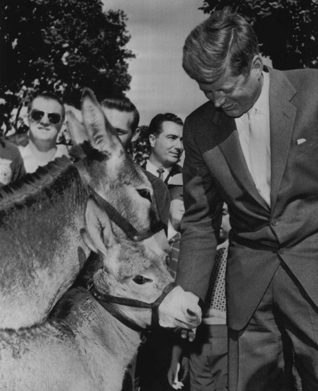 Description of . Sen. Kennedy gives two symbols of his party a friendly pat as he passes them at the Oregon State Fair in Salem, Ore., on Sept. 8, 1960.