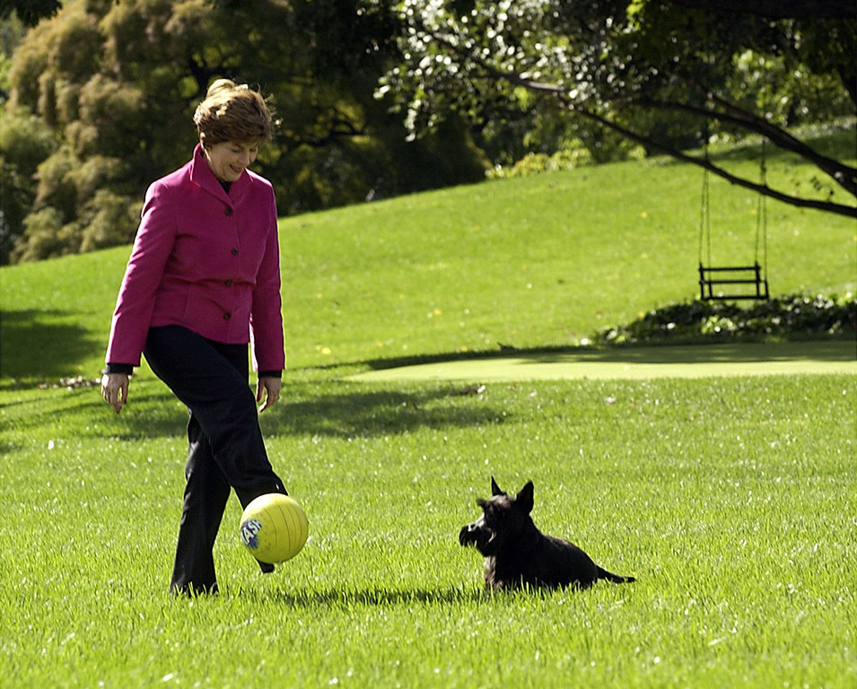 Description of . First Lady Laura Bush kicks a ball with the Bush's dog Barney on the South Lawn of the White House after she returned from her five day trip to Paris and Moscow on Thursday, Oct. 2, 2003. (AP Photo/Gerald Herbert)