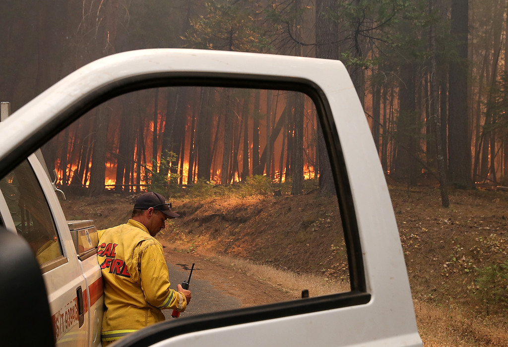 Description of . A Cal Fire firefighter monitors the Rim Fire as it burns through a grove of trees on August 25, 2013 near Groveland, California. The Rim Fire continues to burn out of control and threatens 4,500 homes outside of Yosemite National Park. Over 2,000 firefighters are battling the blaze that has entered a section of Yosemite National Park and is currently 7 percent contained.  (Photo by Justin Sullivan/Getty Images)
