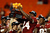 Orange Bowl MVP Lonnie Pryor #24 of the Florida State Seminoles celebrates after they won 31-10 against the Northern Illinois Huskies during the Discover Orange Bowl at Sun Life Stadium on January 1, 2013 in Miami Gardens, Florida.  (Photo by Chris Trotman/Getty Images)