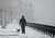 A man walks his dog as a snow storm hits New York, March 8, 2013. AFP PHOTO/EMMANUEL  DUNAND/AFP/Getty Images