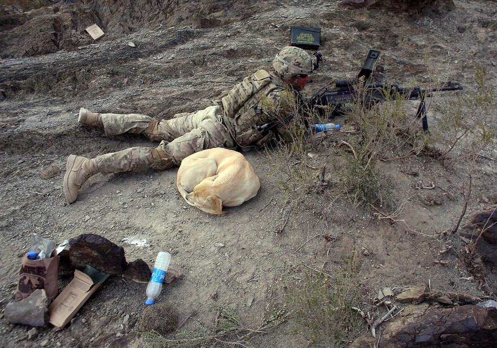 Description of . A dog sleeps next to a U.S soldier at a hill top near the town of Walli Was during an operation in Paktika province, near the border with Pakistan, November 4, 2012. REUTERS/Goran Tomasevic