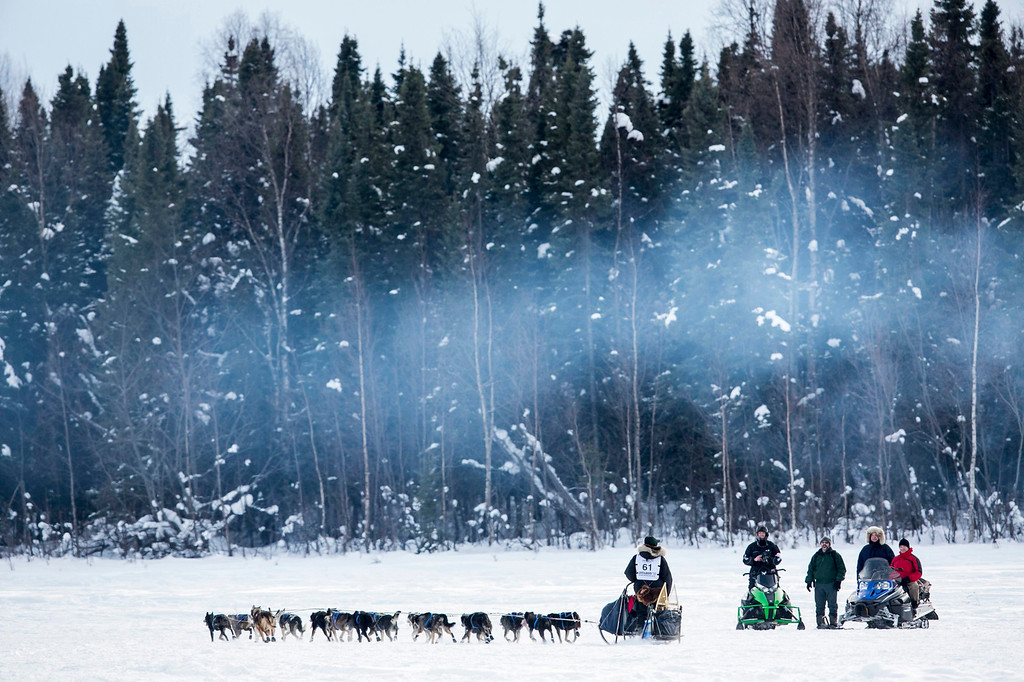 Description of . Musher Matt Failor greets well-wishers along the trail after the re-start of the Iditarod dog sled race in Willow, Alaska March 3, 2013. From Willow, the race runs for almost 1000 miles as it crosses the state.   REUTERS/Nathaniel Wilder