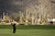 MARANA, AZ - FEBRUARY 21:  Tiger Woods hits a shot from the fairway on the first hole during the first round of the World Golf Championships - Accenture Match Play at the Golf Club at Dove Mountain on February 21, 2013 in Marana, Arizona. Round one play was suspended on February 20 due to inclimate weather and is scheduled to be continued today.  (Photo by Darren Carroll/Getty Images)