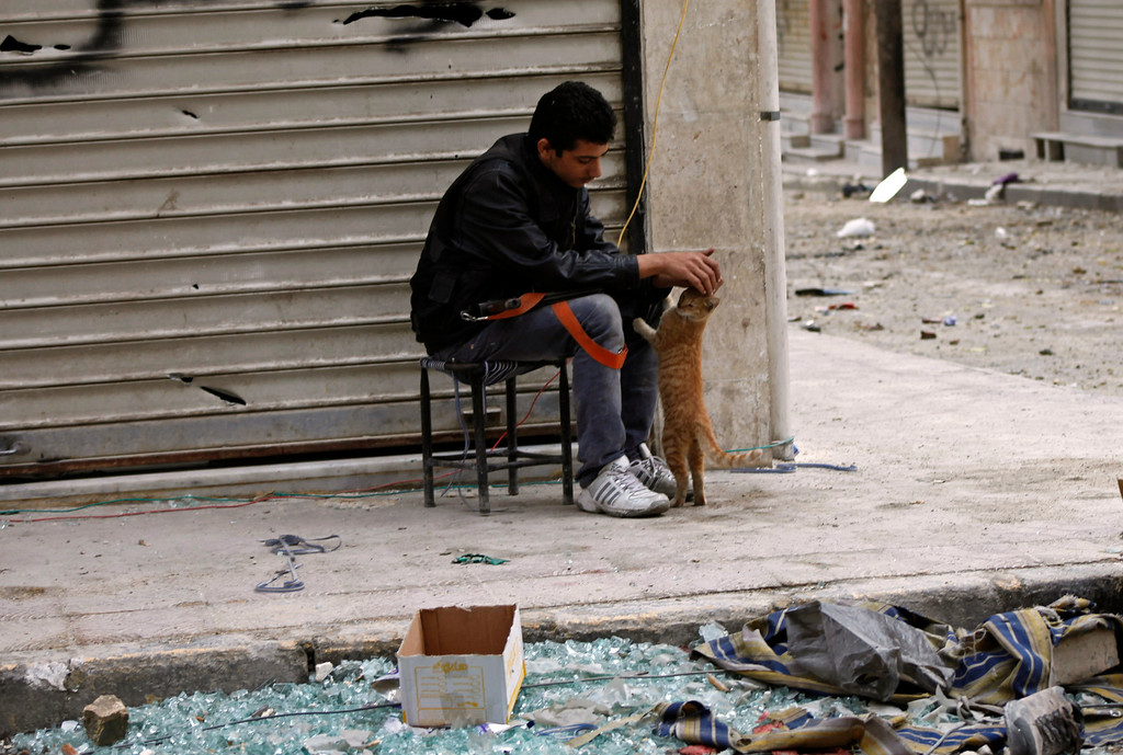 Description of . A member of Free Syrian Army pats a cat in Aleppo October 22, 2012. REUTERS/Zain Karam